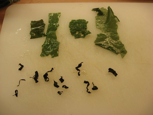 Dried Wakame: A Public Service Announcement