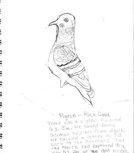 Pigeon by Zipp (age 9)
