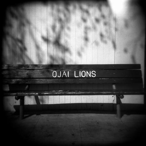 Ojai Lions