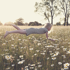 106 of 365 (Morphicx) Tags: emma levitation ijssel goldenlight flowerfield pickingdaisies morphicx