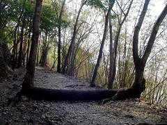 Hellfire Pass (Siegrist-Schmid) Tags: river tour kwai