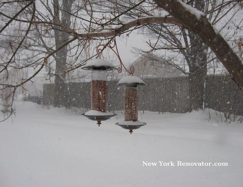 SnowyBirdfeeders