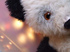 Imperfections - Faded (Harvey Schiller - chateauglenunga) Tags: bear white black macro face nose lights eyes furry teddy faded ear dots mondays macromondays hes44 thisweeksthemeisimperfections