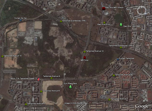 Tampines Google Earth