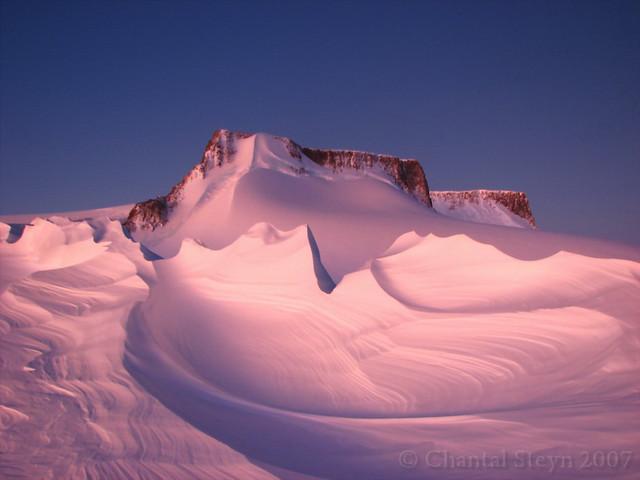 Vesleskarvet - Antarctica 58
