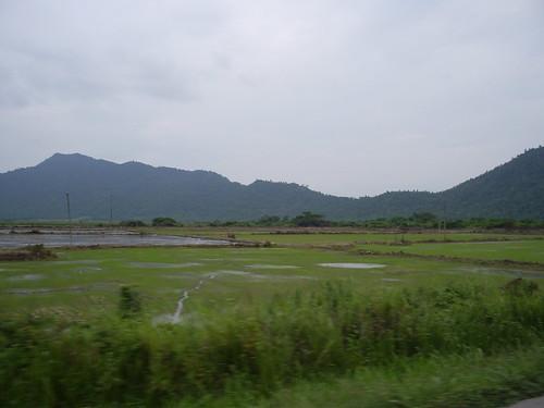 Fields of the Ecuadorian Lowlands