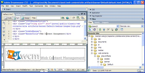 tutorial wcm A web content management system (wcms) is a set of tools that can be used by nontechnical users to organize and manage digital information on websites.