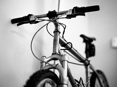 First shot with my Contax 645 - my favorite MTB (ym32) Tags: bw film zeiss 645 dof bokeh mountainbike contax seven 400 carl hp5 f2 custom titanium ilford sola oe planar hardtail 80mm