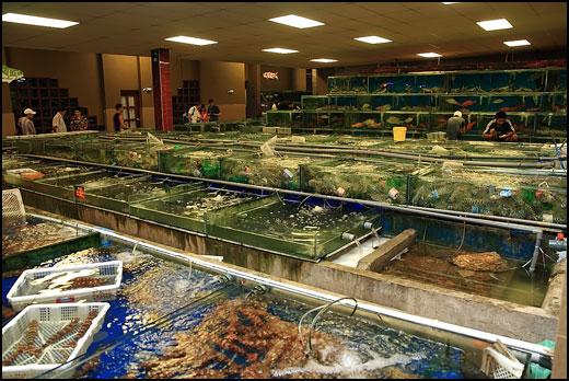 ocean-seafood