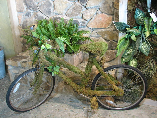 moss covered bike