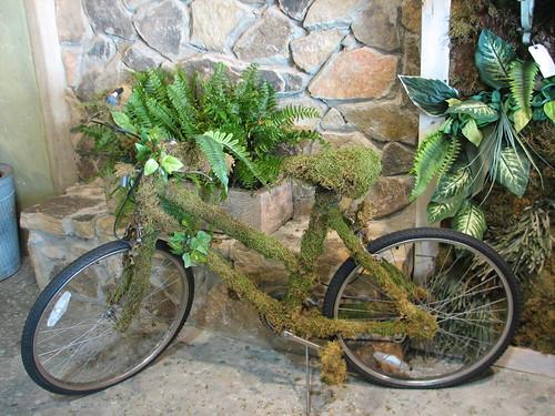 moss covered bike