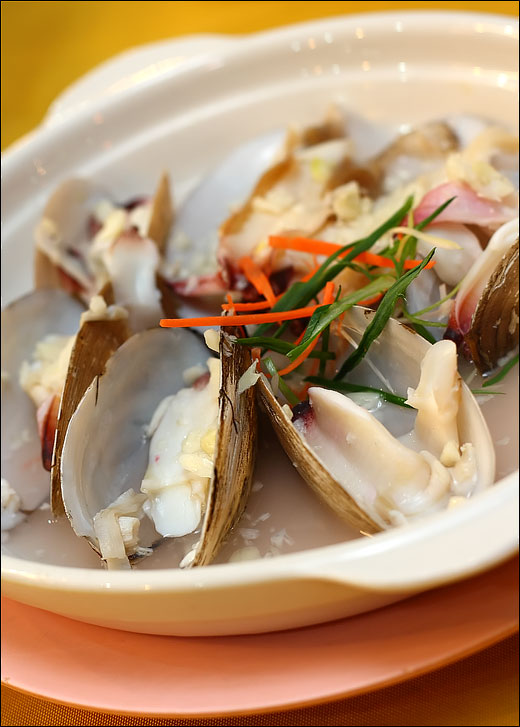 steamed-geoduck