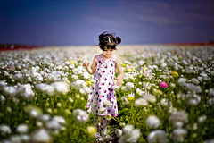 flower field (mylaphotography) Tags: girl child carlsbad armstrong whiteflowers flowerfield editedinlightroom rahislightroompresets