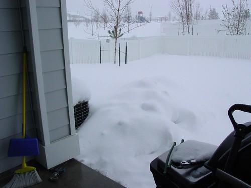 More Damn Snow