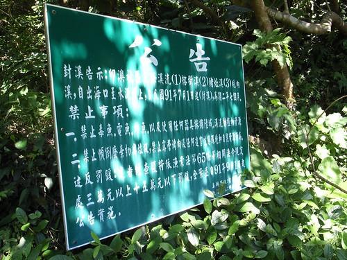 [卯澳社區]封溪公告(榕樹溪、豬灶溪、坑內溪)