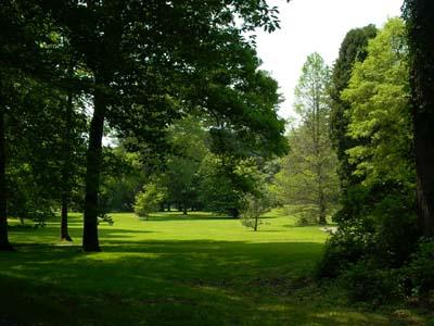 Park in Princeton
