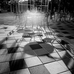 Table and shadows (B. Forrester) Tags: park bw green 120 6x6 film lens t tx houston cm iso hasselblad bryan flare medium format discovery 800 rabid planar 150mm