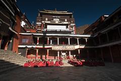 Buddhist Monks Singing in the Morning. (rosskevin756) Tags: shigatse tashilunpo monastery tibet buddhist monks singing morning panchen lama twop tibetan plateau china