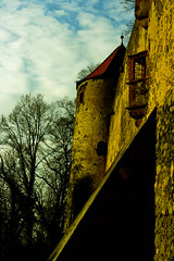 IMG_1318 (iphotography2go) Tags: old castle beautiful look wall contrast rustic tress
