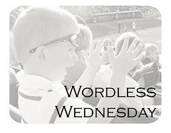 wordless wednesday copy
