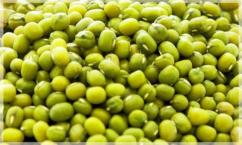 綠豆 五穀雜糧 健康養生