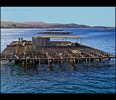 Bateas (ramon.vmorales) Tags: blue sea mar pentax galicia ria arosa batea mejillon colorphotoaward elgrove oltusfotos