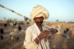 Twilight of Rabari culture (Swiatoslaw Wojtkowiak) Tags: sheep tribal herd development gujarat indigenous herdsmen rabari tradtion kutch 0425
