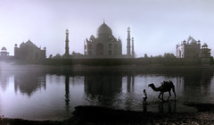 1710 The Taj Mahal as seen from the banks of  the Yamuna River--Agra , India (ngchongkin) Tags: india river niceshot tajmahal camel harmony showroom soe flymetothemoon nationalgeographic musictomyeyes autofocus favoritephotos beautifulshot superphotographer anythingyoulike peaceaward avpa flickrhearts flickraward flickrbronzeaward crystalawards heartawards ultimategold eperkeaward artistsoftheyear wonderfulphotosoftheworld platinumheartawards betterthangood flickridol flickrestrellas anticando beautifulaward thebestshot thirdlife highqualityimages spiritofphotography discoveryphotos qualifiedmembersonly 469photographer photographerparadise artofimages angelawards absolutegoldenmasterpiece visionaryartsgallery firstofall contactaward youandtheworld pegasusaward flickrsgottalent bestpeopleschoice flickraward5 mygearandme fireworksofphotos fabulousplanetevo goldstarawardlevel1 flickrbronzetrophy photographyforrecreationgoldaward flickrtravelaward photographyforrecreationsilveraward photographyforrecreationbronzeaward digitographer thethreeangelslevel1 artistsoftheyearlevel2 vivalavidalevel1 vivalavidalevel2