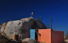 Roadside Shrine (Bill Gracey 24 Million Views) Tags: vacation mexico graffiti bajacalifornia baja roadsideshrine