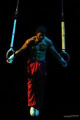 Gymnastics (Daniel Studio Photography) Tags: usa still team kevin tan rings gymnast gymnastics olympic olympian