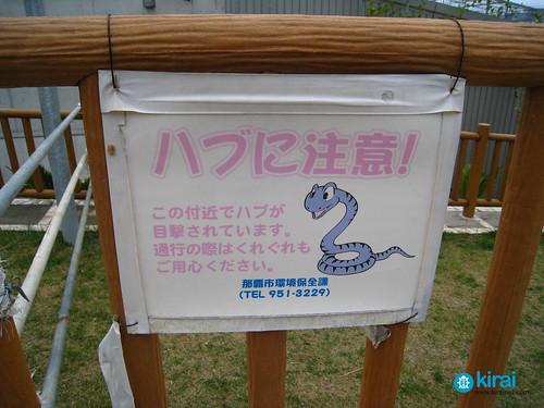 Cuidado con las serpientes class=