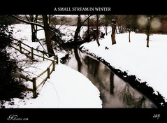 A SMALL STREAM ( Katie ann) Tags: searchthebest beautifulcapture brillianteyejewel goldsealofquality betterthangood photosexplore myfavouriteforest photographersgonewild vosplusbellesphotos amazingnaturebeauty dragondaggerawards zuzkasfaves flickrclassique allaboutreflections