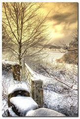 The gate again! (Martyn Starkey) Tags: sky snow tree photography gate starkey martyn hooton golddragon abigfave infinestyle pagnall goldstaraward hootonpagnell vosplusbellesphotos