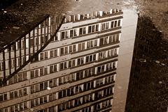 (Viou) Tags: reflet tours paris13 sépia flaque fenêtres sousnospieds