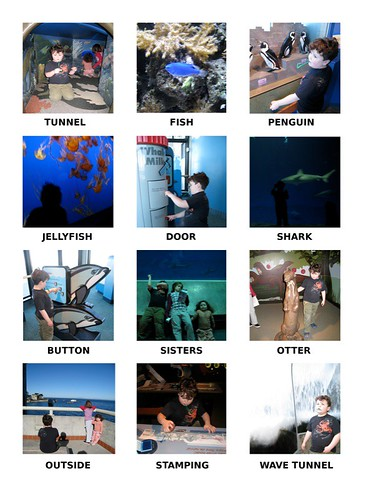 Leo Matching Icons Aquarium