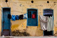 Vida exposta (Boarin) Tags: confraria yemanjácachoeira