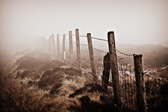 (andrewlee1967) Tags: fence mist moors saddleworthmoor canon50d 50d ef50mmf18 andrewlee1967 uk gb england lancashire britain fog eery spooky foggy barbedwire wet damp rain heather moss niftyfifty 50mm mywinners andrewlee