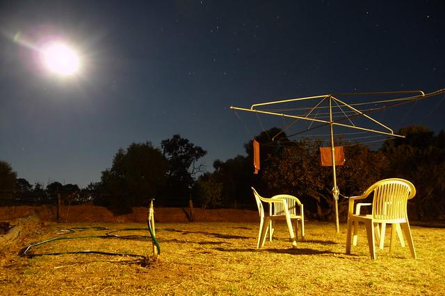Back Paddock in the Moonlight