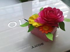 My Valentine Gift 2009  Pink Paper Box For My Girl Friend / ของขวัญวันวาเลนไทน์ปี 2552