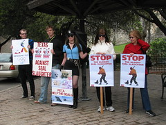 (People for the Ethical Treatment of Animals) Tags: people canada animals vancouver austin us texas bc tx slaughter seals olympics hunt 2010 internationaldayofaction