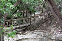 Rocky River Ranch, 2009 (duckunix) Tags: ranch river rocky rrr