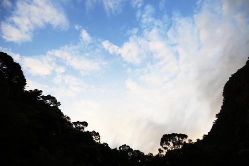 桶後的天空
