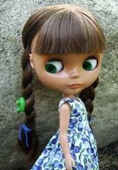Wren braided her hair . . .