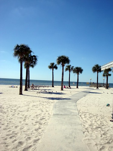 Pine Island Beach - Hidden Gem in Hernando County, FL