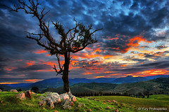 HDR Sunset (-yury-) Tags: blue sunset sky mountains tree clouds canon australia valley nsw 5d hdr  megalong   hdrphotography hdrsunset