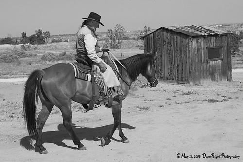 appaloosa horse club. Appaloosa Horse Club #4