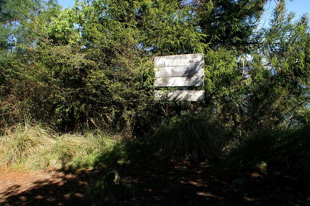 南湖大山day2-29 多加屯山森林三角點