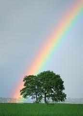 At The End of The Rainbow... (Nilson Bazana) Tags: trees two sky color colour tree green landscape rainbow colorful spectrum chilterns getty colourful potofgold radnage wixall wixbazana wixoutdoors wixlandscape