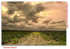 Summer Fields III (Rayos de sol) (Alfonso Domnguez Lavn) Tags: light sky sun sol photoshop landscape nikon all alfonso horizon paisaje rights cielo nubes tips processing rays technique reserved tutorial horizonte edicin dominguez rayos trucos copyrighted cs3 tcnica nd8 procesado nikond40 wwwalfonsodominguezes alfonsodominguez