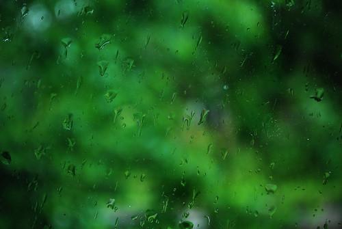 Lietus ant lango